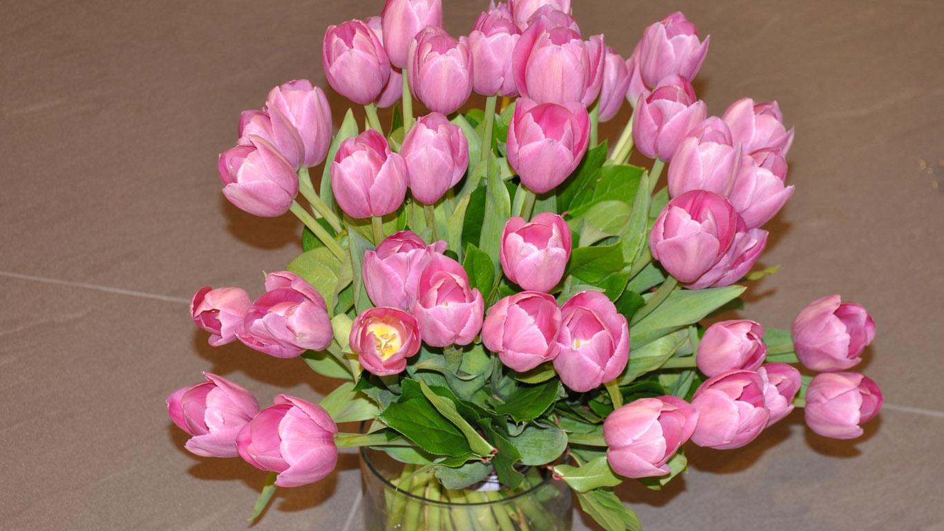 Обои цветы 1366х768 для рабочего стола: www.1366x768.ru/flower-2.php